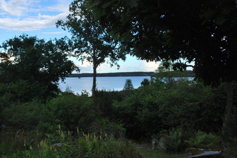 Utsikt från trädgården mo Mälaren