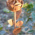 Rostig ros