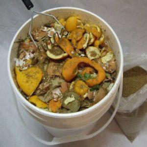 Kompostering - hink med grönsaksrester.
