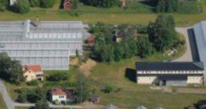 Bild Skallebergs handelsträdgård Ormbacka Järfälla