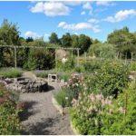 Bild trädgården Almare Stäket_550